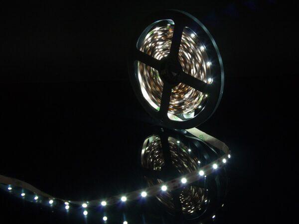 Лента светодиодная стандарт 3528, 60 LED/м, 4,8 Вт/м, 12В, IP20, Цвет: Холодный белый (6000К)