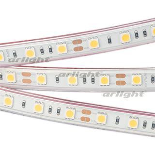 Лента RTW 2-5000P 12V Warm2700 2x (5060, 300 LED, LUX)