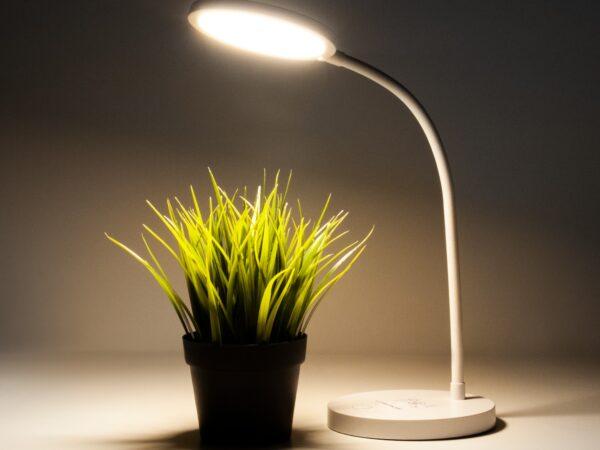 TL90560 / Светильник светодиодный настольный Tiara белый
