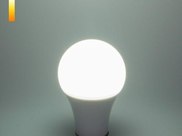 Classic LED D 17W 6500K E27 / Светодиодная лампа Classic LED D 17W 6500K E27