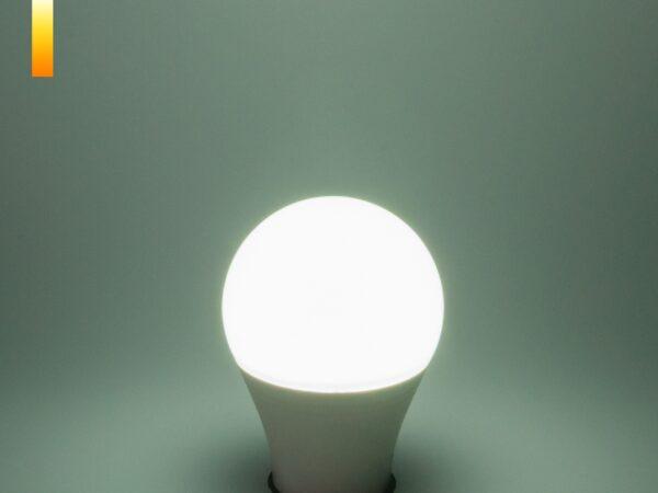 Classic LED D 10W 6500K E27 / Светодиодная лампа Classic LED D 10W 6500K E27