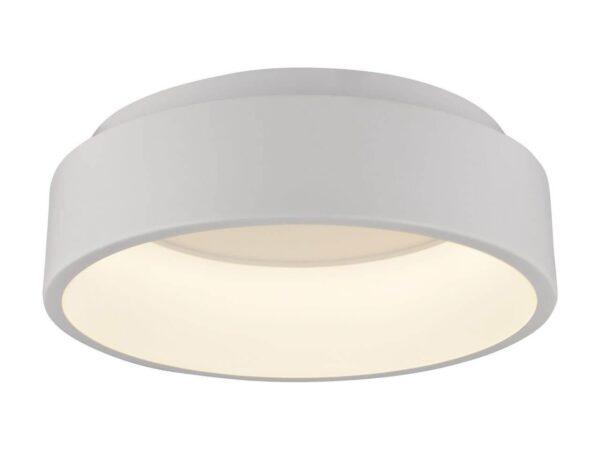 Потолочный светодиодный светильник Arte Lamp A6245PL-1WH