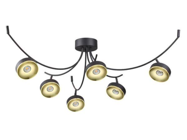 Потолочная светодиодная люстра Odeon Light Fineca 3812/42CL