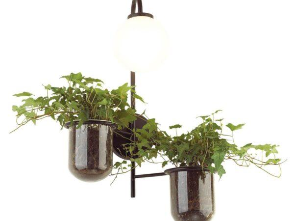 Настенный светильник Odeon Light Flower 4681/1W