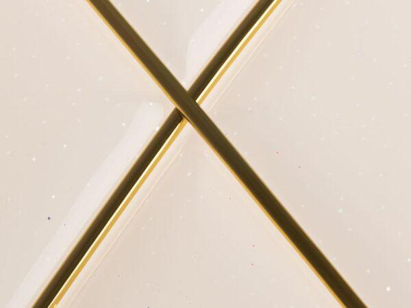 Потолочный светодиодный светильник Arte Lamp Biscotti A2677PL-72GO