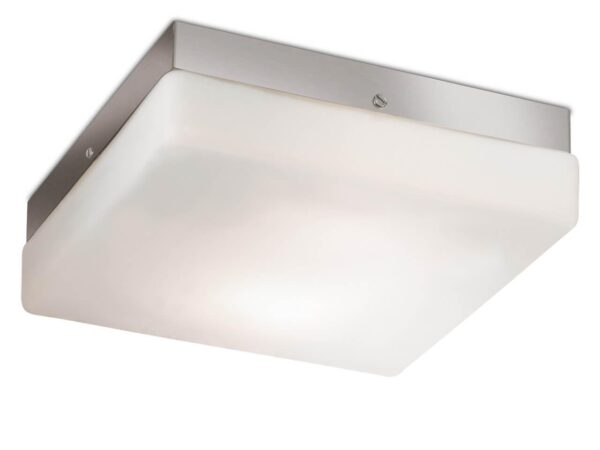 Потолочный светильник Odeon Light Hill 2406/1C