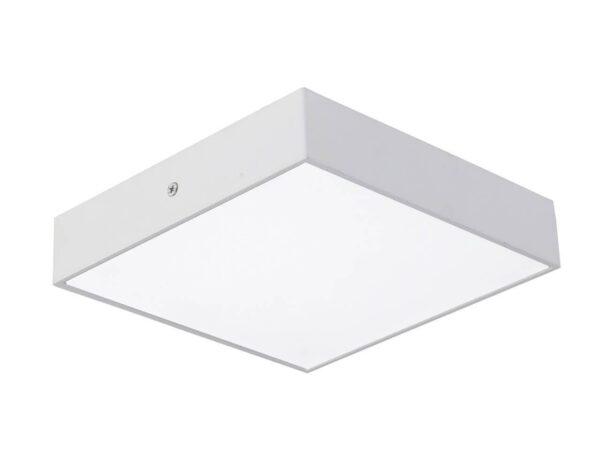 Потолочный светодиодный светильник Favourite Flashled 2066-24C
