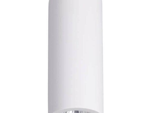 Потолочный светильник Odeon Light Gesso 3554/1C
