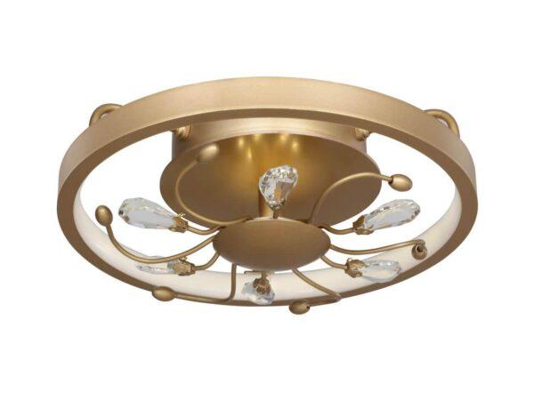 Потолочный светодиодный светильник Favourite Waltz 2534-2C